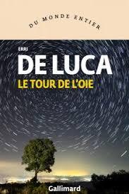 Critique Avis Le Tour de L'Oie de Erri De Luca | Livres/BD/Mangas  Culture-Tops